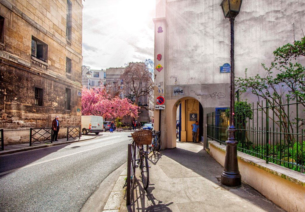 Spring in Paris 03