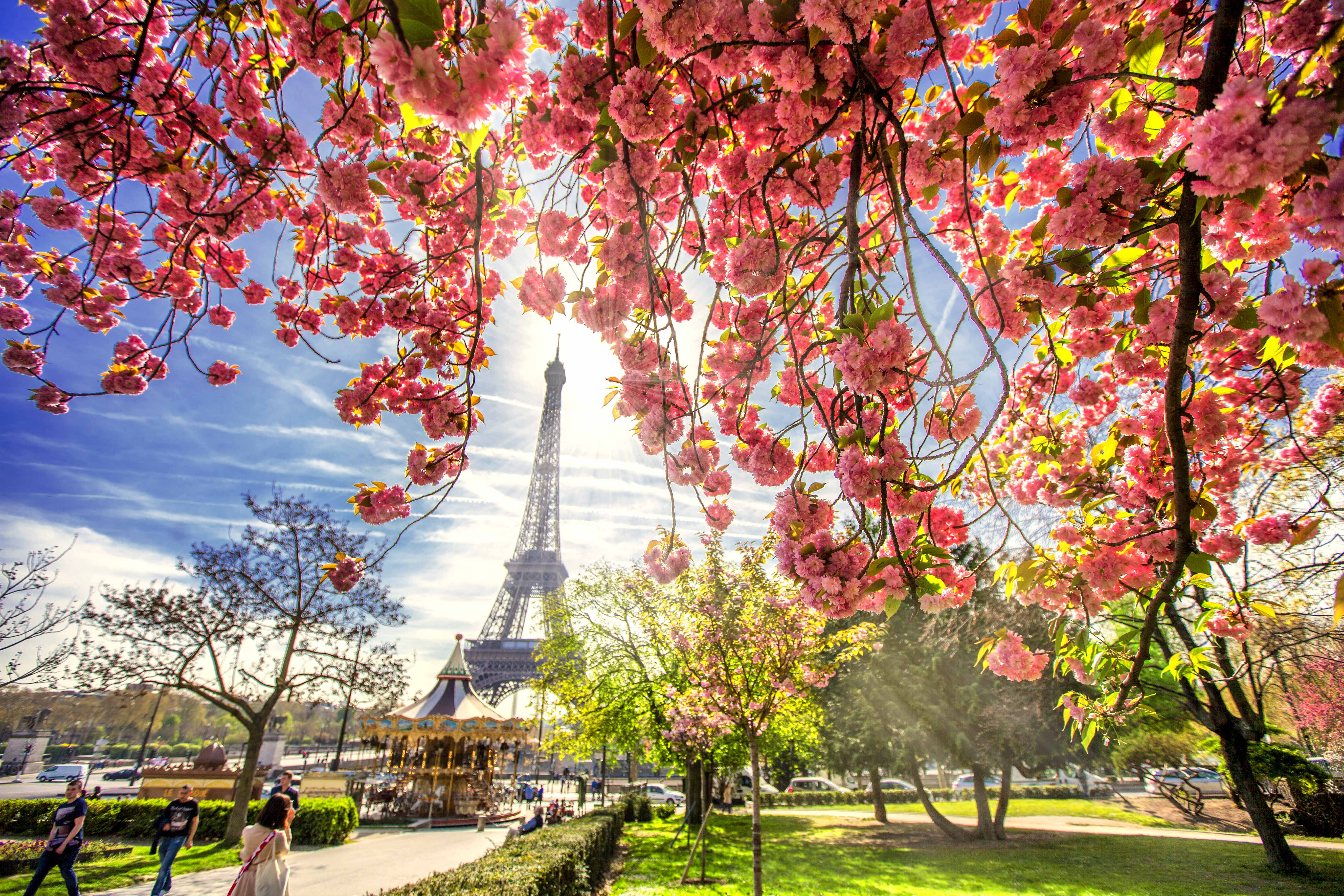 Spring in Paris 06