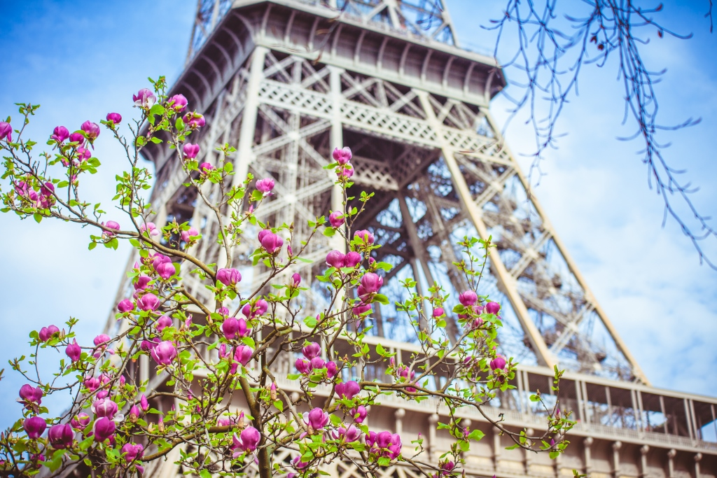 Spring in Paris 07